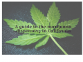 A guide to the marijuana dispensary in California